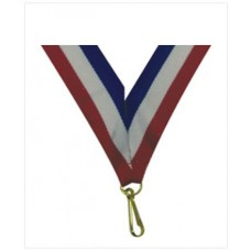 RIBBON with pvc RB74301 MY